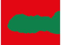 Logo: Toni's Pizza-Express